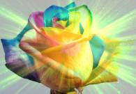 Bunga di Sorga; illustrasi